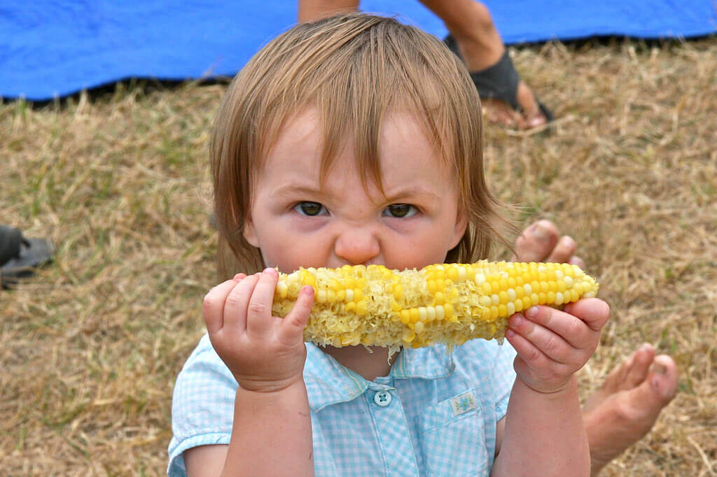 Salt Spring - 2016 Garlic Festival -cornIMG_3885cb