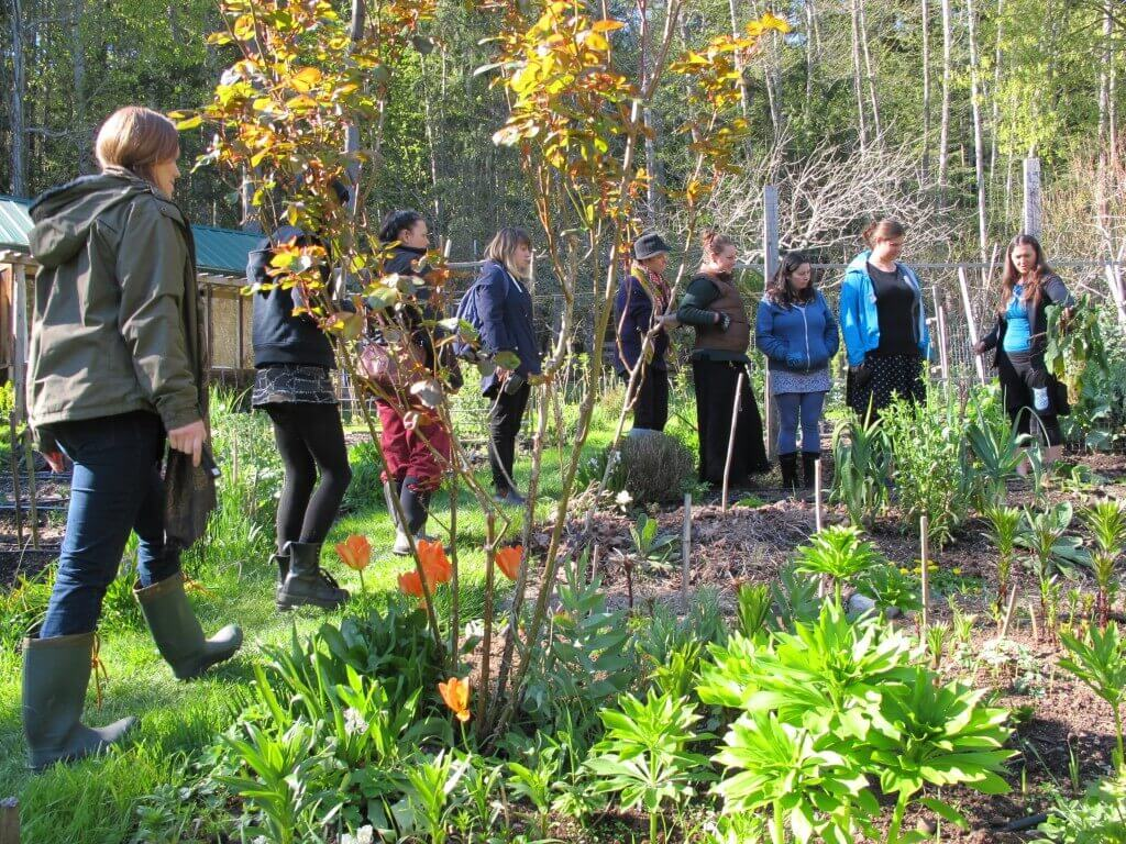 Salt Spring - Dental Care and Herbalism at ClearHeart Botanicals 04